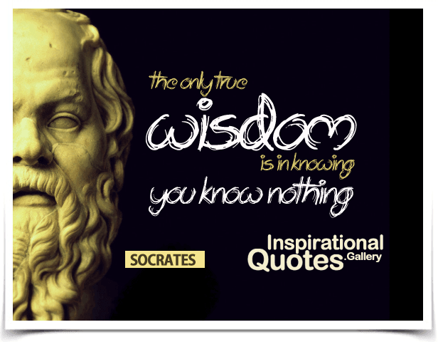 The only true wisdom is in knowing you know nothing. Quote by Socrates.