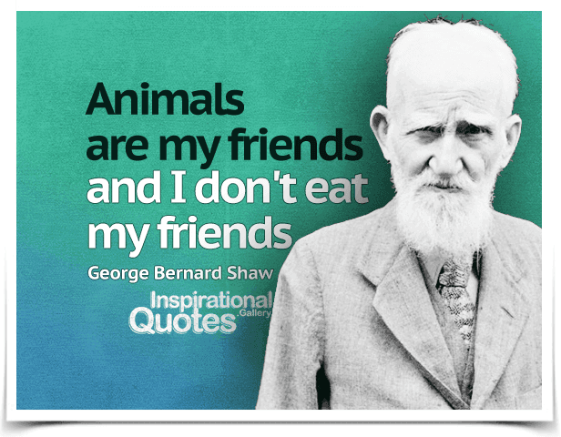 Animals are my friends and I don't eat my friends. Quote by George Bernard Shaw.